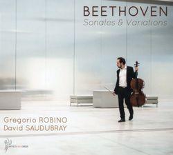 "7 variations en Mi bémol Maj sur ""Bei Männern welche Liebe fühlen"" de La flûte enchantée de Mozart WoO 46 - GREGORIO ROBINO"