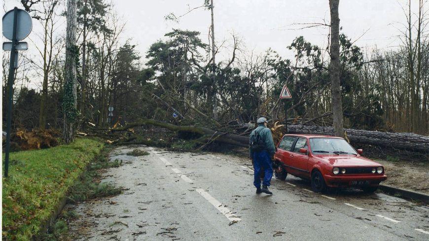 Le 27 décembre 1999, après le passage de la tempête au Bois de Boulogne (photo d'illustration).