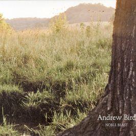 "Pochette de l'album ""Noble beast"" par Andrew Bird"