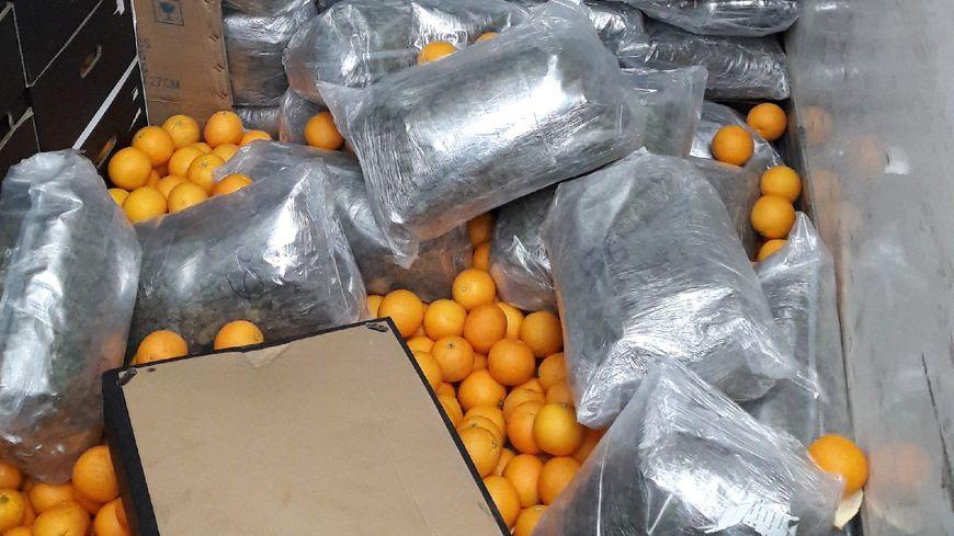 152 kilos d'herbe de cannabis ont été découverts au milieu de palettes d'oranges, dans un camion frigorifique, sur l'A75.