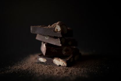 Aux origines du chocolat (2)