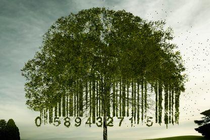 le point de basculement vers des modes de vie durables
