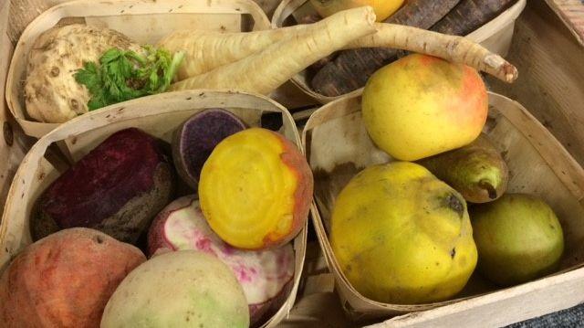 Les légumes racines: Panais, Navets, Betteraves, carottes
