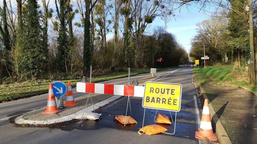 La route est déviée pendant deux mois et demi pour laisser les grenouilles traverser en toute sécurité