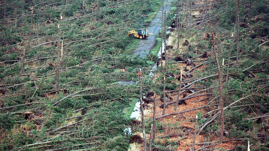 Vue aérienne au dessus de Montalivet le 28 décembre 1999