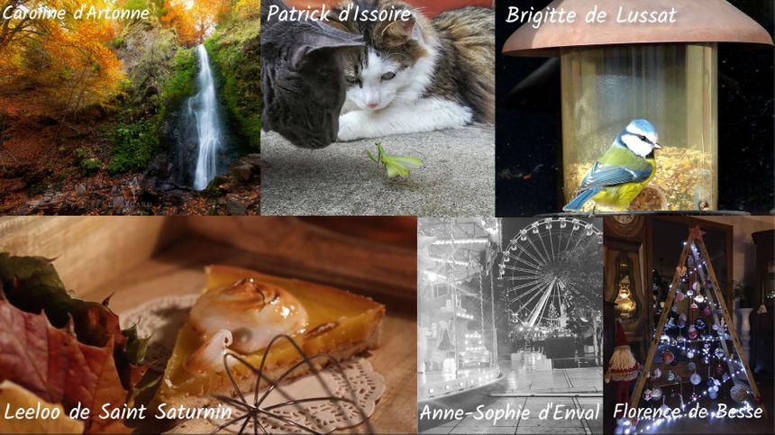 Les photos gagnantes sélectionnées par le jury France Bleu Pays d'Auvergne
