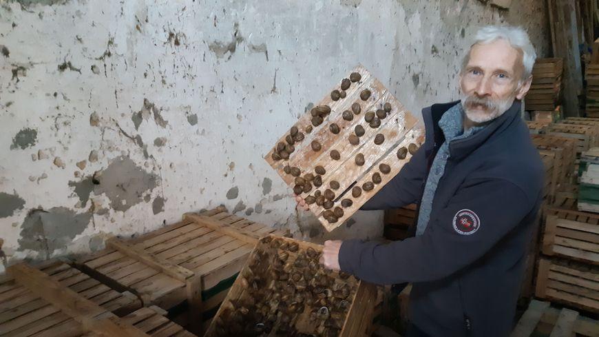 Une production de 60 mille escargots par an à Ochey.