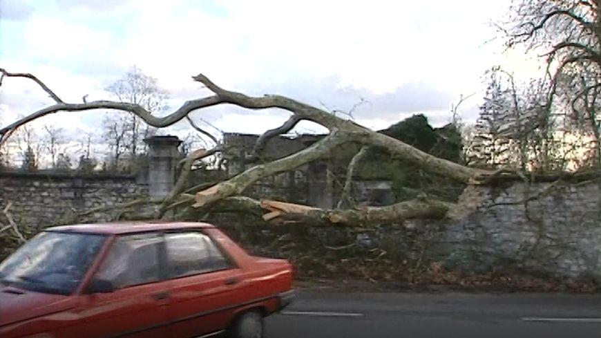 Plus de 220 mille personnes étaient privées d'électricité après le passage de la tempête en 1999