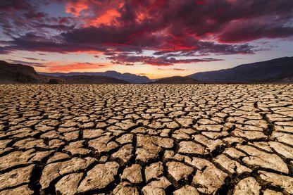 Bilan de l'accord de Paris et COP25