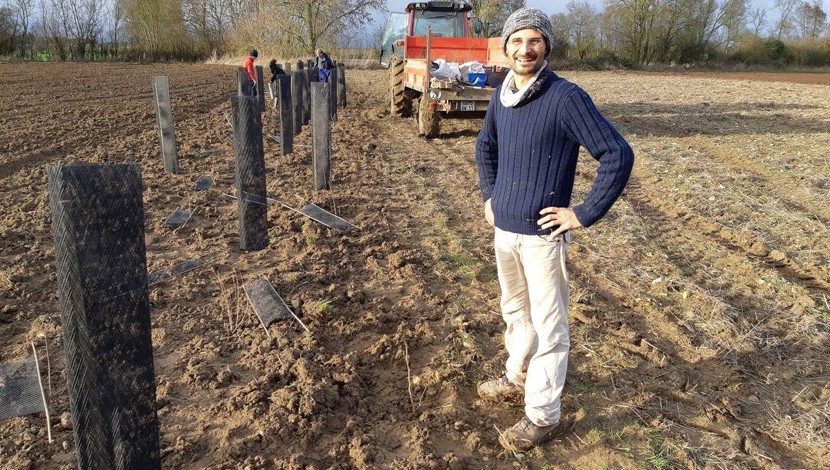 Charente-Maritime : et si on replantait des haies à la campagne ?