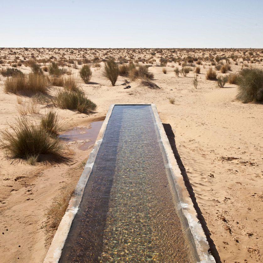 La Tunisie en première ligne du changement climatique
