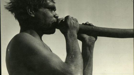 Un Aborigène en 1900 souffle dans un didgeridoo, instrument traditionnel, cousin du cor de chasse