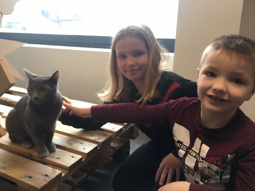 Angélique et Théo ont joué avec Pixel, l'un des chats du salon de thé.