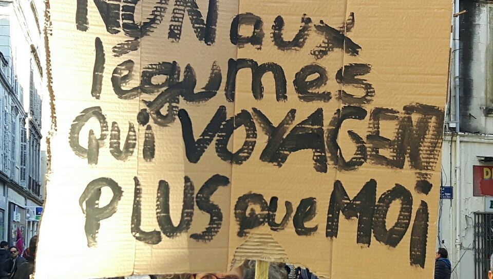 Les marcheurs pour le climat interpellent les élus à Avignon
