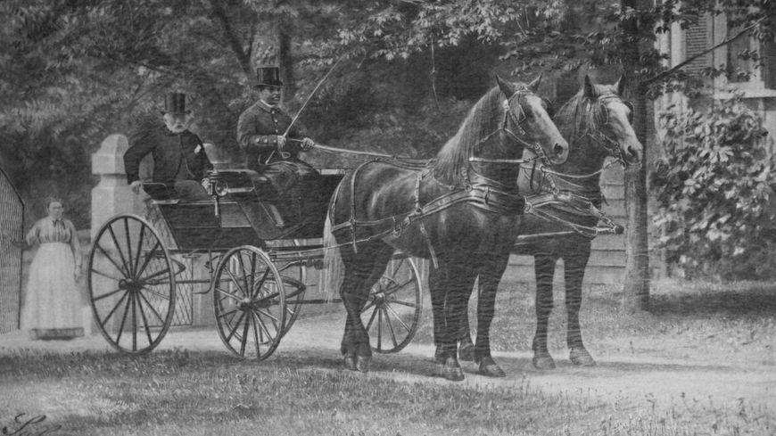Importation percheronne en Amérique par W.T Walters 1868