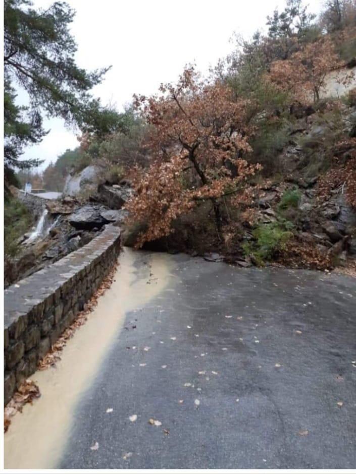 Une chute d'arbre sur la route d'Ilonse dans la vallée de la Tinée