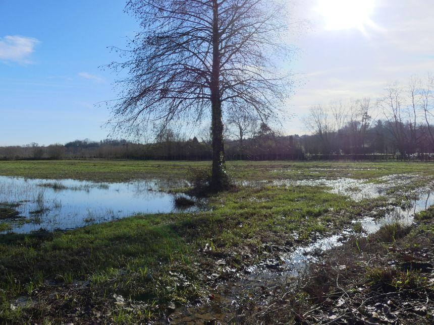Les terrains en bordure de l'Adour encore saturés une semaine après les inondations