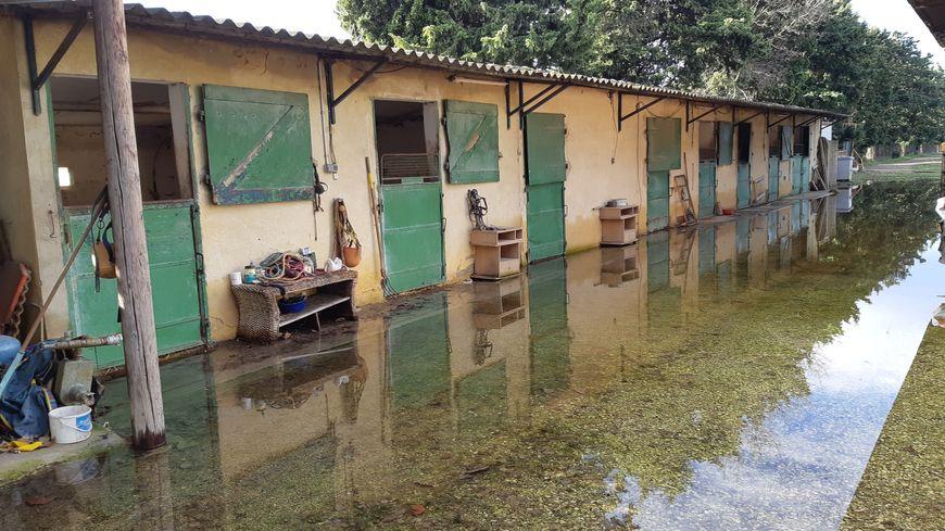 Les box des chevaux et les paddocks voisins sont inondés ici