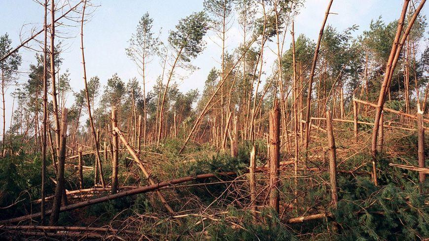 Images des dégâts causés par la tempête de 1999 en Dordogne