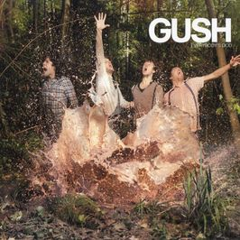 "Pochette de l'album ""Everybody's god"" par Gush"