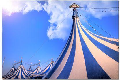 Le cirque sans animaux