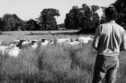 Charles, éleveur de brebis quelque part en Bretagne, a fait le choix de disparaître pour échapper aux contrôles de l'administration