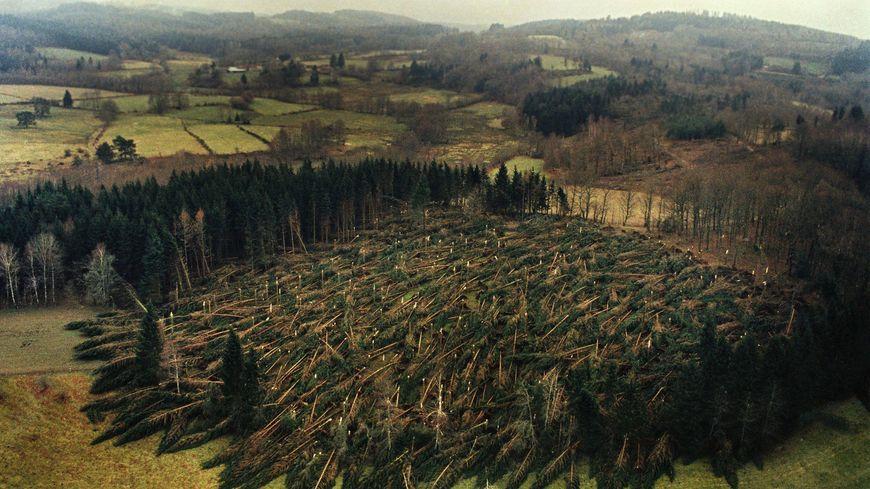 Photo illustration. Comme sur cette photo de la région de Bourganeuf en Creuse, en Limousin la tempête Martin a détruit environ 10 000 hectares de forêts