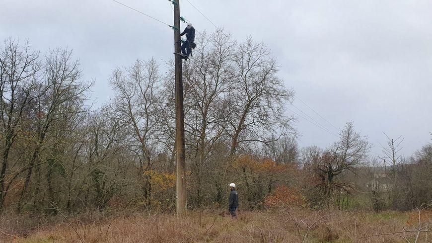 240 agents d'Enedis sont mobilisés en Limousin ce dimanche, pour réparer les lignes électriques endommagées par la tempête Fabien (photo d'illustration)