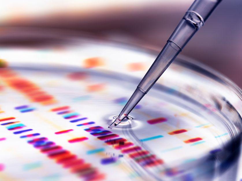 La thérapie génique consiste à introduire du matériel génétique pour soigner une maladie, soit en important un gène sain, soit en modifiant le gène défectueu