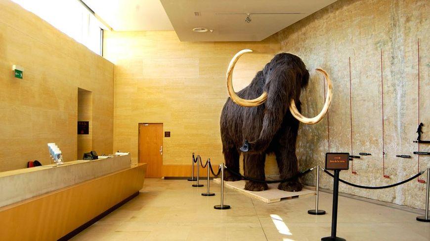 Félix le mammouth mesure plus de 5 mètres de long.