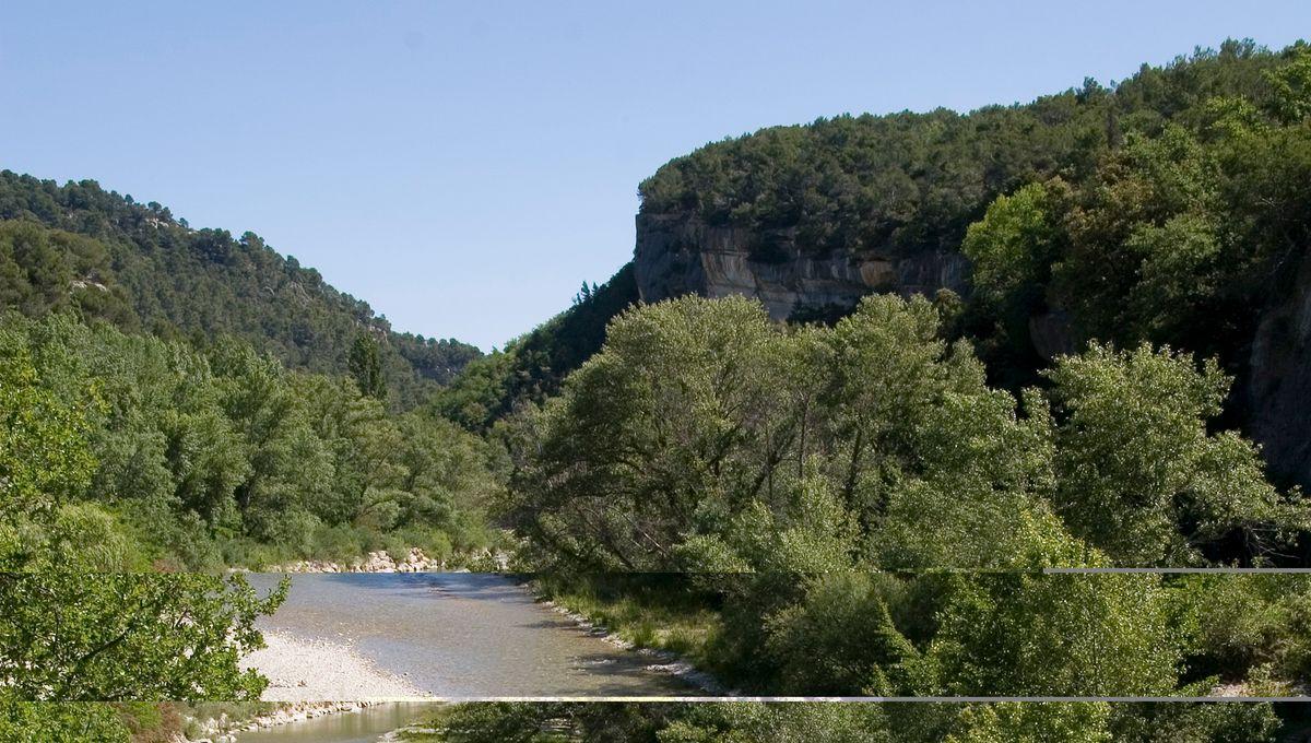 Plus de quatre millions d'euros de l'agence régionale de l'eau pour le Vaucluse
