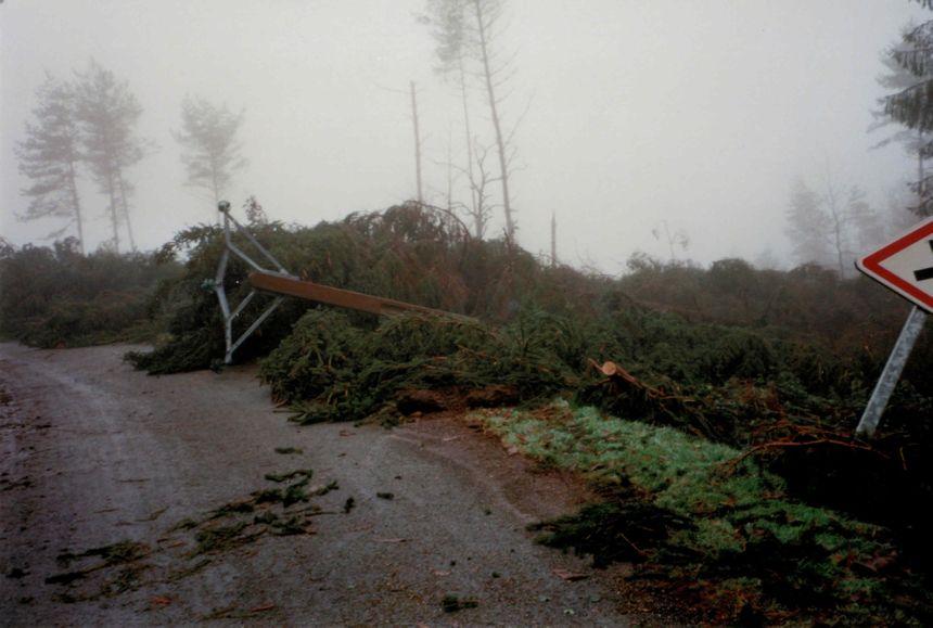 Des arbres tombés sur les lignes électriques dans le secteur de Châtelus-le-Marcheix.