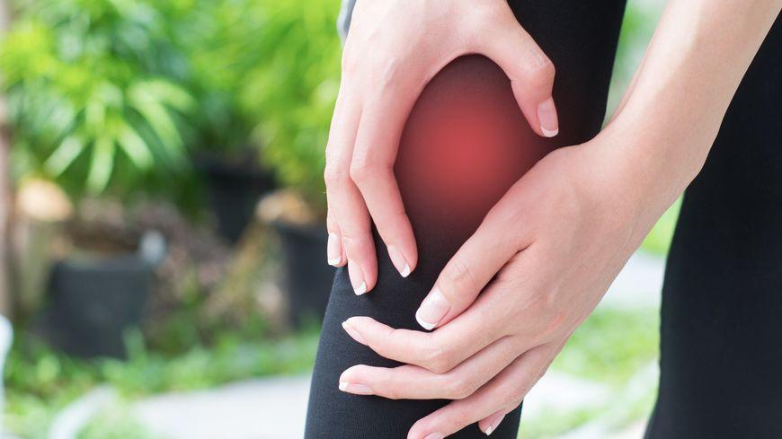Comparatif Boswellia - Soulager l'arthrite et l'Arthrite avec la phytothérapie