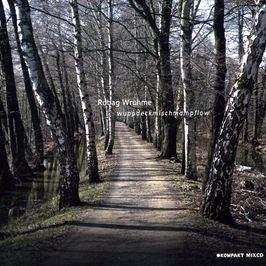 """Pochette de l'album """"Wuppdeckmischmampflow"""" par Robag Wruhme"""