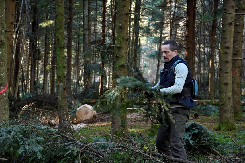Grégory Haye en forêt