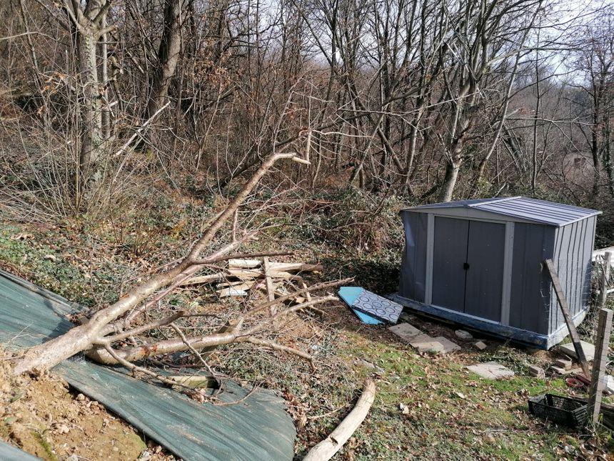Le jardin de Philippe, en bordure de la forêt, a été en partie détruit par la tornade.