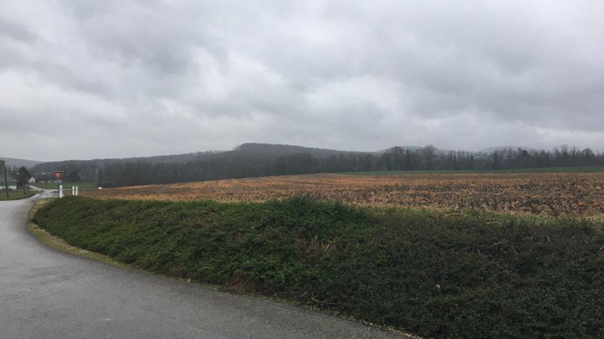 Le poulailler doit voir le jour dans un champ agricole de Rigney.
