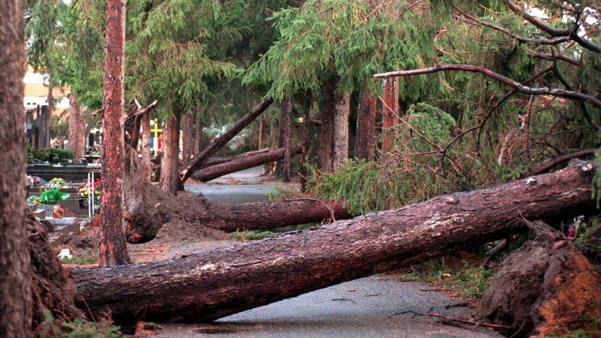 Dans la nuit du 27 au 28 décembre 1999, la tempête Martin causait des dégâts impressionnants en Auvergne.