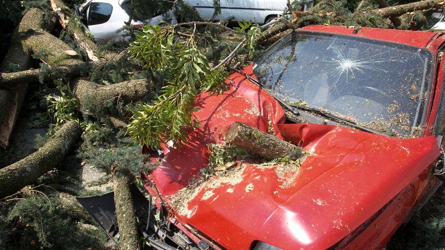 La tempête de 99 a fait beaucoup de dégâts en Creuse (image d'illustration)