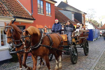 À Odense, dans la vieille ville pas de voiture mais des calèches.