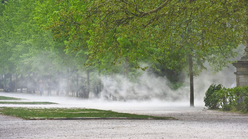 Les rafales de vent pourraient attendre localement les 120km/h