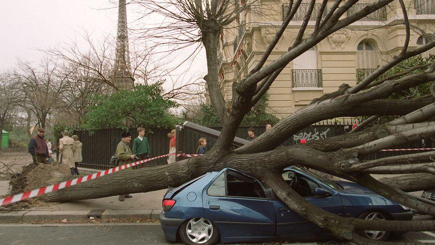 Illustration des dégâts après le passage de la tempête Lothar près de la tour Eiffel à Paris,  le 26 décembre 1999