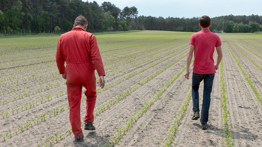 Jeunes agriculteurs (illustration)