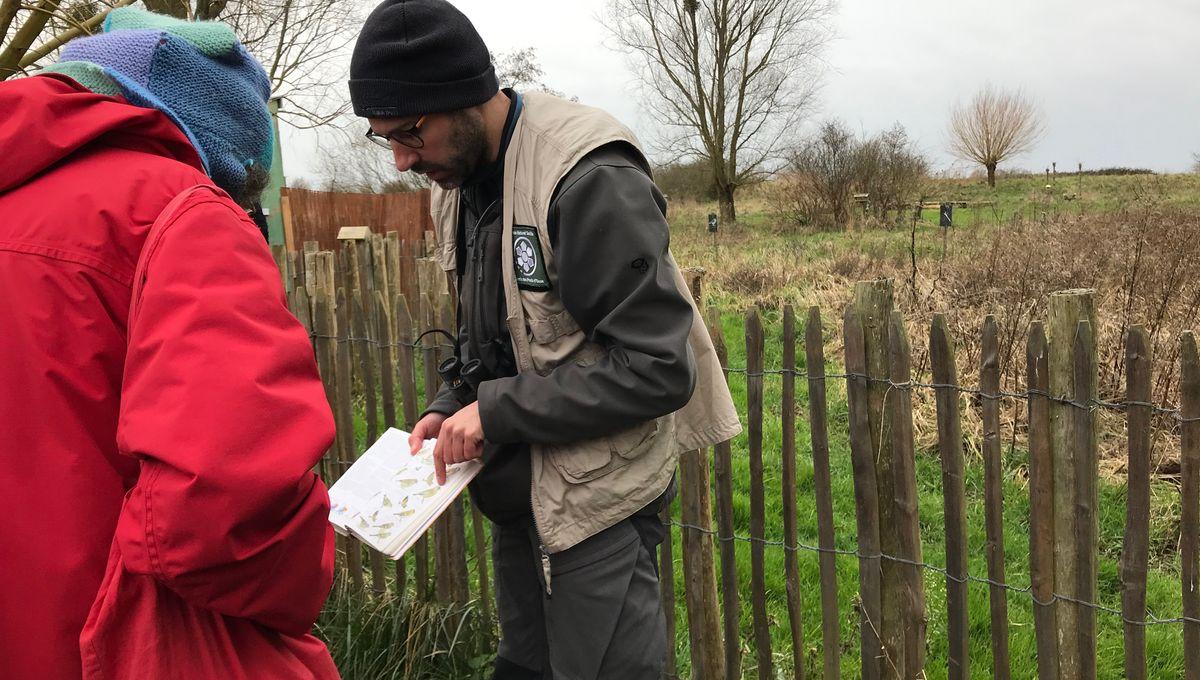 Biodiversité : apprendre à compter les oiseaux de son jardin pour recenser les espèces