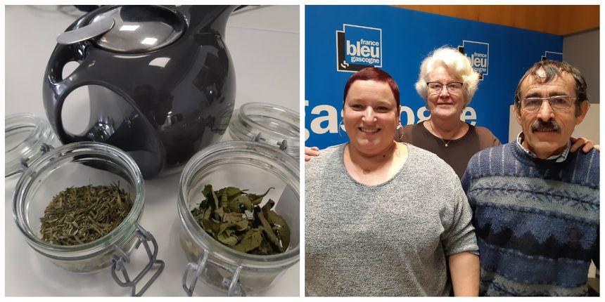 Les plantes médicinales de la ferme Coumet de Préchacq-les-Bains dégustées en direct avec nos producteurs et Marie-Colette notre auditrice gourmande du jour