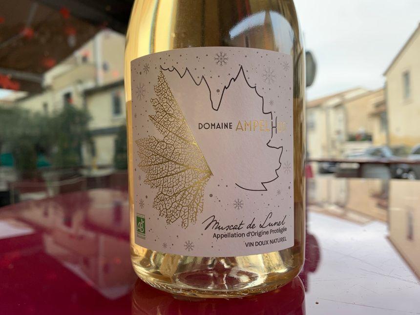 Le Muscat de Lunel du Domaine Ampelhus : une gourmandise alliant complexité aromatique et finesse