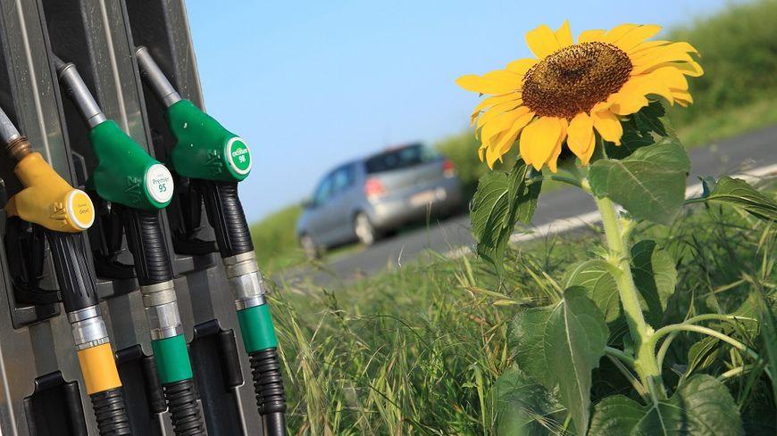 """A 0,69 euro le litre à la pompe en moyenne, moins taxé, c'est """"le carburant du pouvoir d'achat""""."""