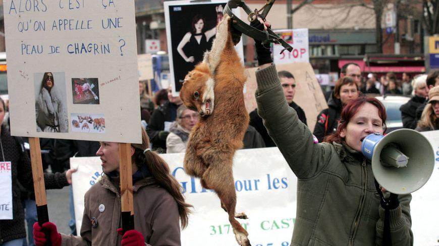 Une manifestation anti-fourrure à Toulouse