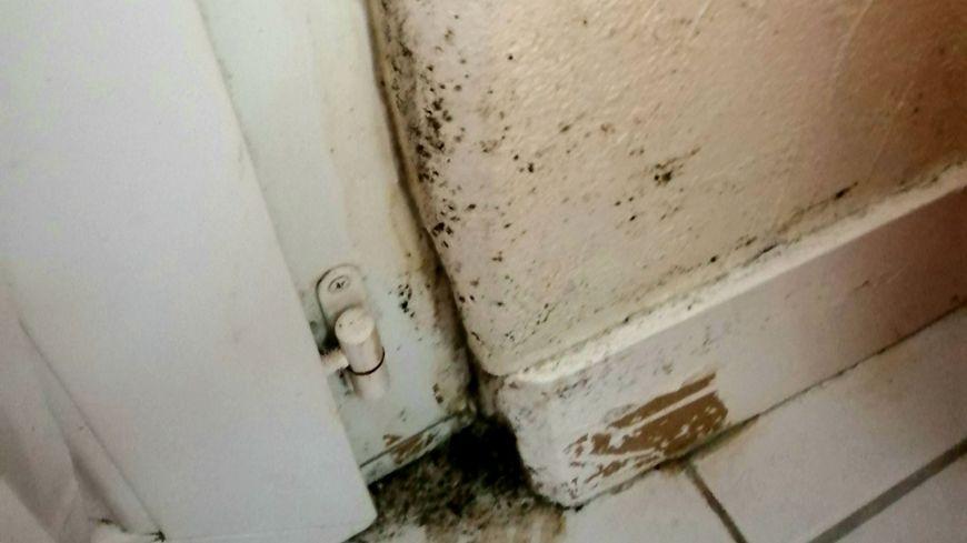 Des traces de moisissures dans la maison de Claudine à Chasseneuil-du-Poitou