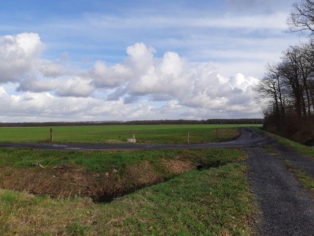 """C'est sur ce terrain, aujourd'hui agricole, que doit être aménagé le complexe touristique du """"Chambord Country Club"""", à La Ferté-Saint-Cyr"""